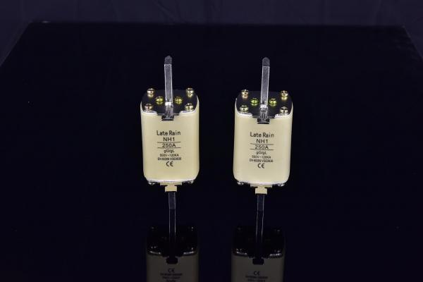 Quality Cartouche blanche de fusible de 2a 500v, tension NT00 de fusible cylindrique de Hrc basse for sale
