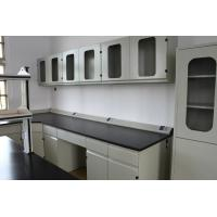 China School Steel Laboratory Furniture , Chemistry Lab Bench Hanging Cupboard wholesale