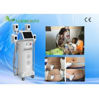 China Professional slimming cryolipolysis slmming machine for sale/fat freezing slimming on sale
