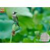 China Garden Plastic Bird Netting UV Stabilised , Square Plastic Bird Mesh Black Color wholesale
