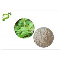 China CAS 989 51 5 EGCG Green Tea Extract Cosmetic Grades Epigallocatechin Gallate Ingredient wholesale