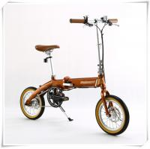 China Mini Folding AOWA Eelectric Bike Womens 14'' Wheel Electric Foldable Bike wholesale