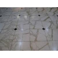 China Calacatta White Marble Slab/ Marble Tile/ Countertop wholesale