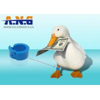 China Duck Chicken Leg Tags,Foot Ring Animal Rfid Tags For Livestock Management wholesale