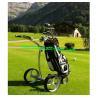 China Nouveau chariot électrique à golf de première classe de chariot de golf de l'Allemagne de chariot de poussée de golf de théorie wholesale
