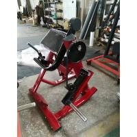 China Customized Color Life Fitness Gym Equipment , Weight Training Equipment wholesale
