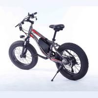 China Comfortable 20 Inch Electric Bike Fat Tire 36V 10Ah 7 Speed Gears Shifter wholesale