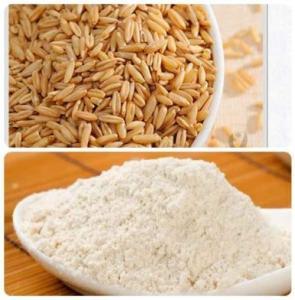 China Low Viscosity Premium Health Supplements Zero Added Instant Oat Powder GREAT Taste wholesale