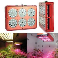 China Green house ceiling hanged 200W hydroponic LED grow light wholesale