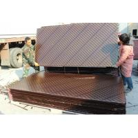 China Kemplywood, China famous brand film faced plywood, Best competitive construction shuttering plywood wholesale