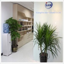 Guangzhou Sam Cosmetic Company Ltd.