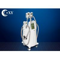 China 4 Treatment Heads Cryolipolysis Slimming Machine 220V / 110V For Beauty Salon wholesale