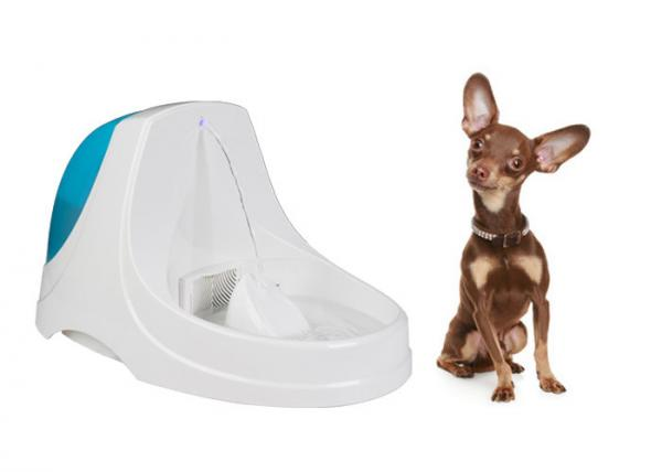 Quality Ultra Quiet Pet Drinking Water Fountain Transparent ABS 38x25x22 CM for sale