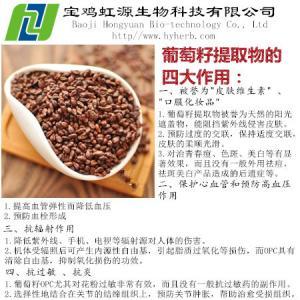 China Grape Seed Extract Vitis Vinifera on sale