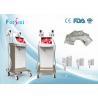 China máquina gorda do emagrecimento do gelo do cryolipolysis do preço do lipo do vaser da tela de 15 polegadas wholesale