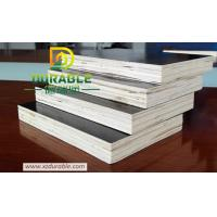 China High quality 1220*2440*12mm Brown Film Faced Plywood  competitive price phenolic plywood wholesale