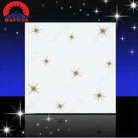 China Decoration fireproof suspended ceiling tiles wholesale