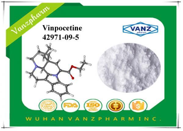 Quality White Nootropics Powder 99% Purity Vinpocetine powder CAS 42971-09-5 for sale