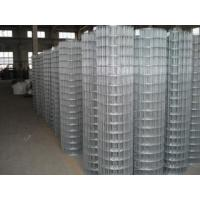 """China welded wire mesh 1""""X1"""",2""""x1"""" wholesale"""
