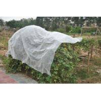 China Anti UV Agriculture Nonwoven Fabric For Protection Vegetables on sale