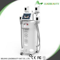 China Fat removal white color cryolipolysis slimming machine wholesale