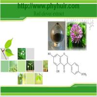 China Red Clover P.E. wholesale