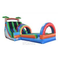 China Dual Lane Water Slide with pool WSS-252/Applicable to amusement park activities wholesale