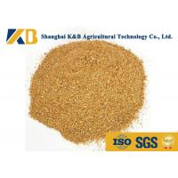 China Feed Grade Healthy Corn Protein Powder ISO HACCP Certificate For Fodder wholesale
