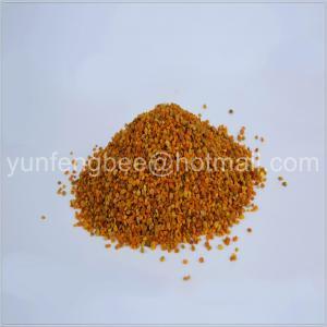 China supply high quality mixed bee pollen, rape bee pollen, tea bee pollen wholesale