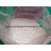 China CAS 315-37-7 Testosterone Enanthate Injectable Steroids , Test Enan Androtardyl Testosterone Injections Steroids on sale