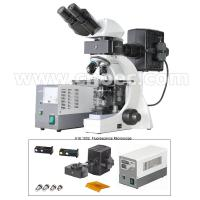 Buy cheap La lampe binoculaire infinie B et G du microscope de fluorescence 3W LED from wholesalers