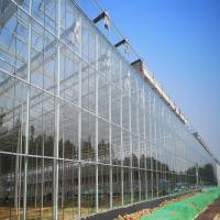 China Galvanized Steel Horticultural Glass Greenhouse Waterproof Good Anti Corrosive Effect wholesale