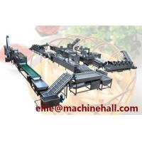 China Frozen French Fries Processing Line Making Equipment With Factory Price wholesale