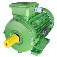 China Squirrel Cage 3 Phase 4 Pole Induction Ac Motor 0.75kw For Woodworking Machinery on sale