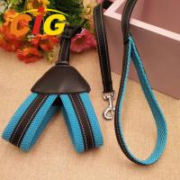 China Dog Chain Leash Traction Rope Safety Pet Polyester Harness Leash For Dog on sale