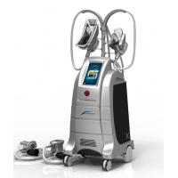 China ETG50-4S the best cryolipolysis machine Korea to Cellulite Recuction with two handles wholesale