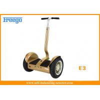 China City Road Power Display Segway self-balancing electric scooter for CE approval wholesale