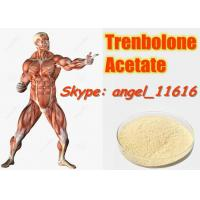 China 10161-34-9 Tren Acetate Trenbolone Powder For Fitness / Muscle Building Steroids wholesale