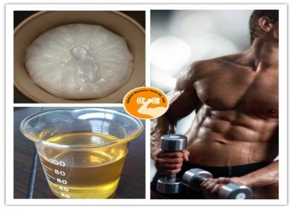 Quality Long - Term Test Sustanon 250 CAS 521 11 9 , Mestanolone Muscle Growth Hormone for sale