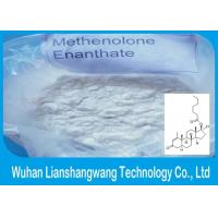 China Bodybuilding Anabolic Steroids Primobolan Methenolone Enanthate wholesale