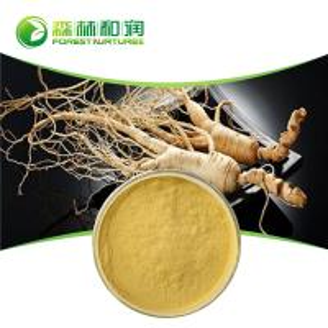 China Natural extract ginseng powder panax ginseng ginsenoside free sample on sale