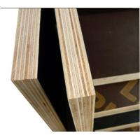 China hot sale 12mm black construction plywood/18mm shuttering plywood with cheap price wholesale