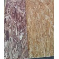 China OSB3 (Oriented Strand Board), we have one line of OSB product, which can make size 4*8, thickness from 6MM to 30MM wholesale