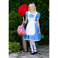 China Story book Fairytale Teen Girl Halloween Costumes Child Supreme Alice wholesale