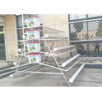 China Galvanized Poultry Chicken Cages Steel Battery Egg Layer Chicken Cages With Trough wholesale