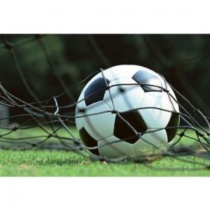 Artificial Grass, Tencate Thiolon Fifa Standard