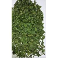 China AD Dehydrated Parsley Leaf 2018 New Crop with ISO, HACCP, FDA certificates on sale
