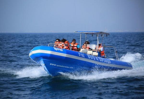 Quality シャチのHypalonの運ぶことのための助手席が付いている膨脹可能な肋骨のボートrib960C for sale