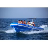 China シャチのHypalonの運ぶことのための助手席が付いている膨脹可能な肋骨のボートrib960C wholesale