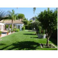 12500Dtex 36mm PE Artificial Fake Turf Grass Lawn